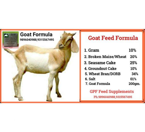 GPF Goat Formula_1
