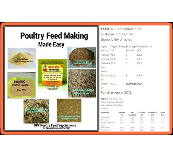 GPF Poultry All-In-One Formula_1