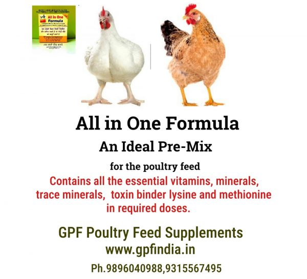GPF Poultry All-In-One Formula_6