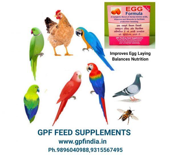 GPF Poultry Egg Formula_1
